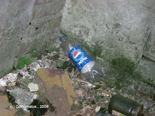 Cothurnatus - Pepsi. Ask for more!