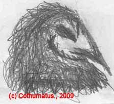 Cothurnatus - Mystic Bird