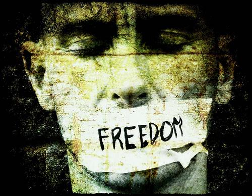Вот такая она - свобода!