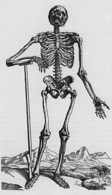 Средневековая смерть копателя