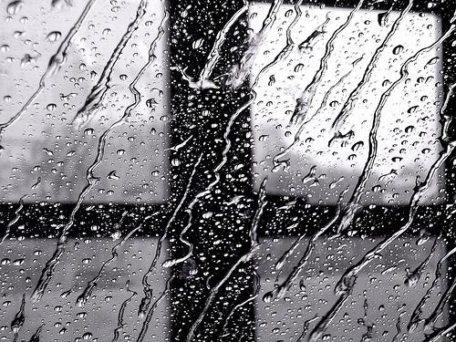 rain_ne