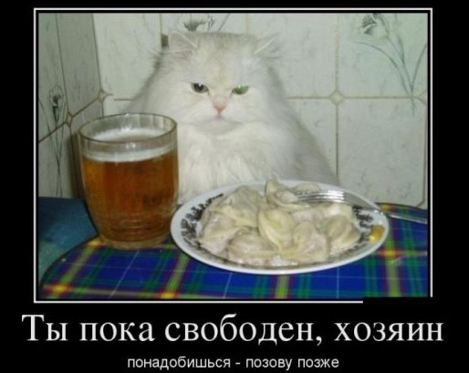 kto_hozain