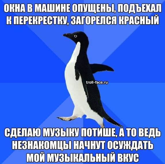pingvin_muzykalnie_vkusy